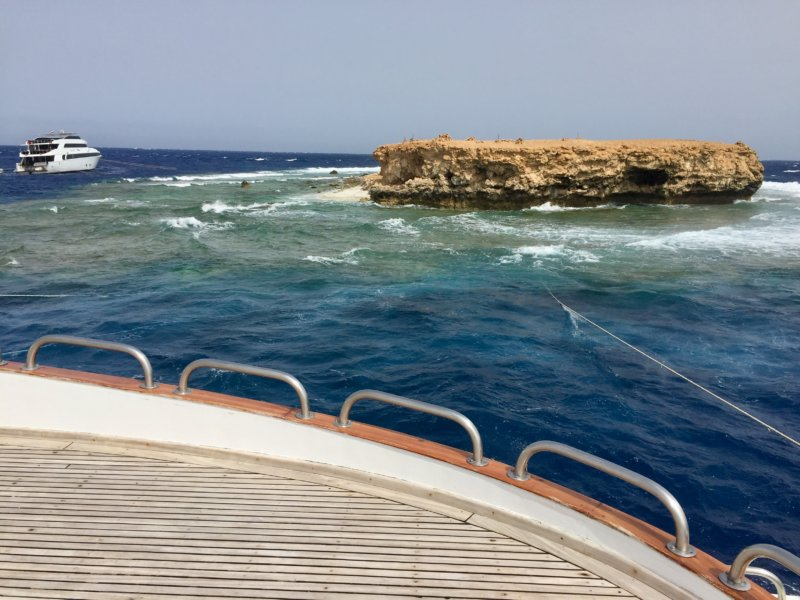 Red Sea Small Brother