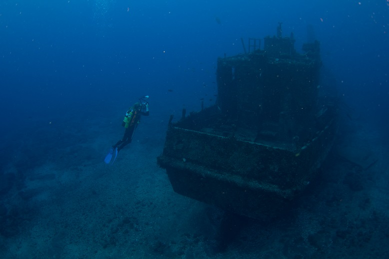 St Helena wreck with diver